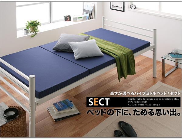 【SECT】 セクト